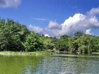 Lengyel - Annafürdő
